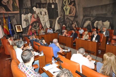 Pleno de Diputación Provincial de Ciudad Real
