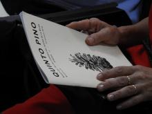 Tercera edición de 'Quinto Pino'