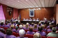 V Pleno Ciudadano