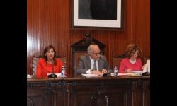 Momento de la sesión de pleno correspondiente al mes de abril 2017