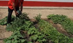 """Proyecto de """"Recualificación para personas afectadas por la crisis"""" en Manzanares"""