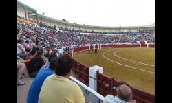 Plaza de toros de Manzanares durante un festejo