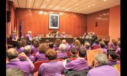 IV Pleno Ciudadano
