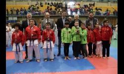 Campeonato Regional de Karate