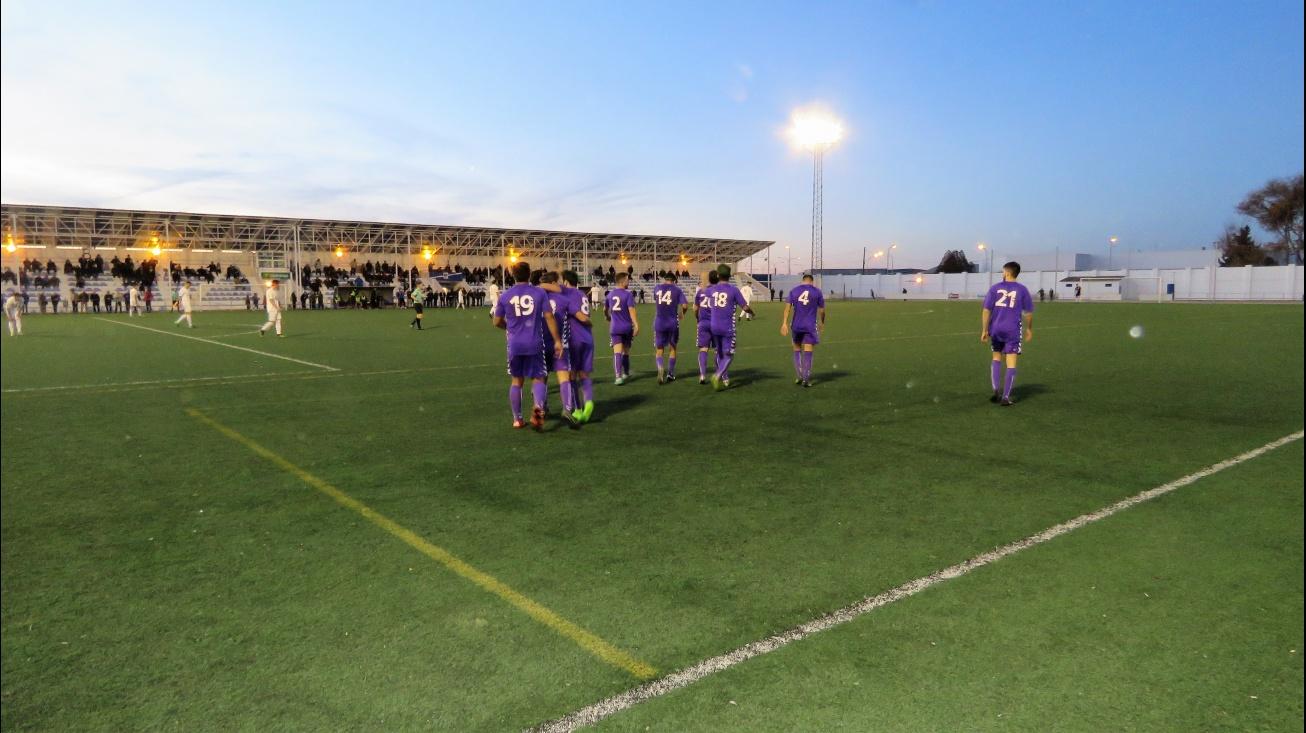 Los jugadores del Manzanares celebran en gol de Sergio Madrid
